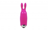 Минивибратор Adrien Lastic Pocket Vibe Rabbit Pink