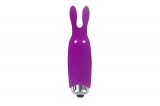 Минивибратор Adrien Lastic Pocket Vibe Rabbit Purple